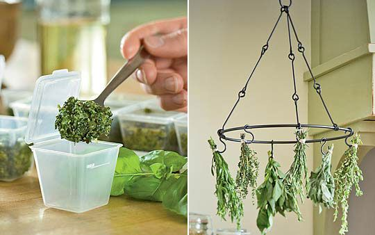 Great way to dry your herbs.Dry Racks, Preserves Herbs, Growing Herbs, Freeze Herbs, Fresh Herbs, Dry Herbs, Herbs Dry, Fantasy Kitchens, Cubes Amp