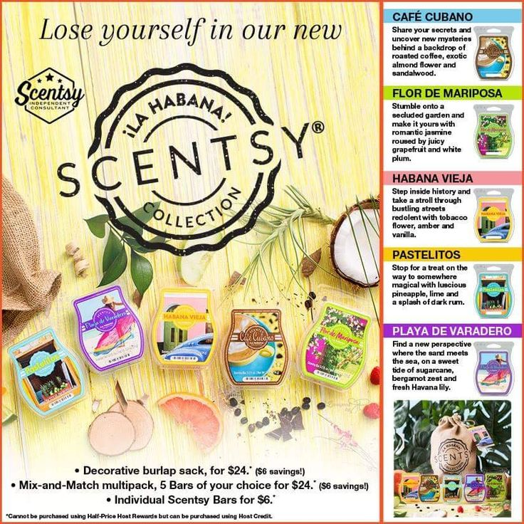 ☆☆☆ New ☆☆☆ Amazing new scents available only while supplies last! https://ashtaley.scentsy.ca/