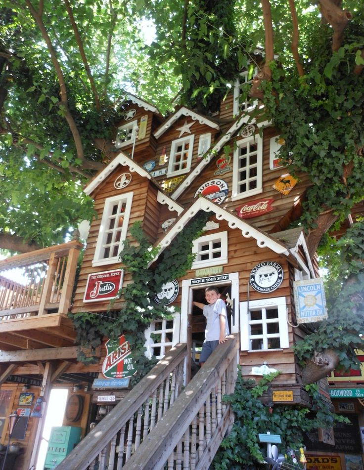162 Best Treehouses And Ideas Images On Pinterest Treehouses