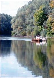 Szekszárd » Danube-Dráva National Park - Gemenc forest