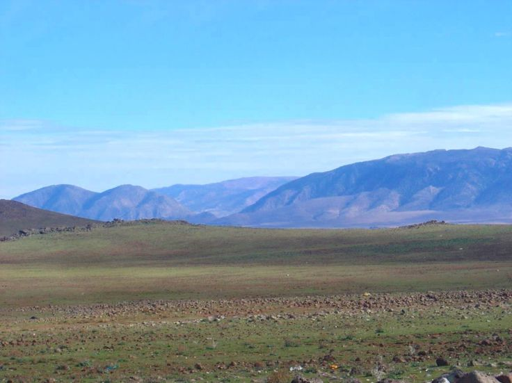 Morocco, Ifrane - Midelt Highway, Middle Atlas Mountains in distance