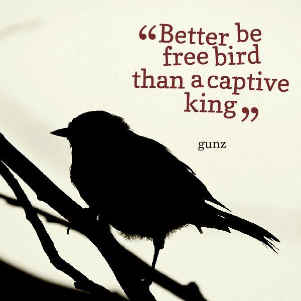 I M A Free Bird Quotes