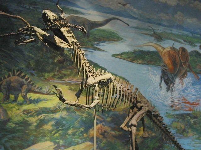 Zigong Dinosaur Museum | Atlas Obscura