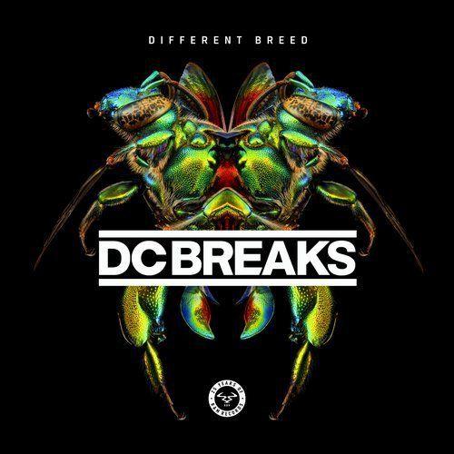 Dc Breaks - Different Breed Style: #Electronic / DrumAndBass Released: 03.04.2017 Label: Ram Tracklist: 1. DC Breaks – Never Stop (05:25) 2. DC Breaks – Underground (03:51) 3. DC Breaks – Everybody (03:08) 4. DC Breaks – Hustle (03:45) 5. DC Breaks – No One Like You (feat. Niara Scarlett) (03:04) 6. DC Breaks – Swag 2017 (04:17) 7. DC Breaks – Moving On (05:45) 8. DC Breaks – Organism (04:54) 9. DC Breaks – Step Up (04:34) 10. DC Breaks –