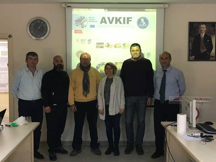 Türk Çoban Köpeklerimiz Dünya Vitrinine Çıkıyor | AVKIF