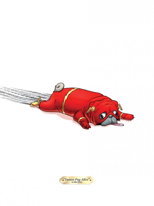 Fastest Pug Alive by Mike Norton