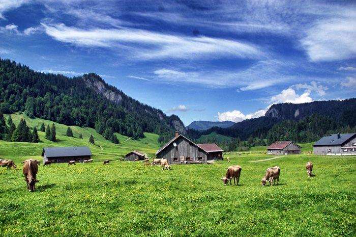Berge-Bregenzerwald