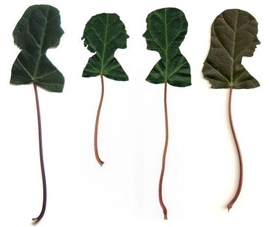 Leaf Silhouette Portraits