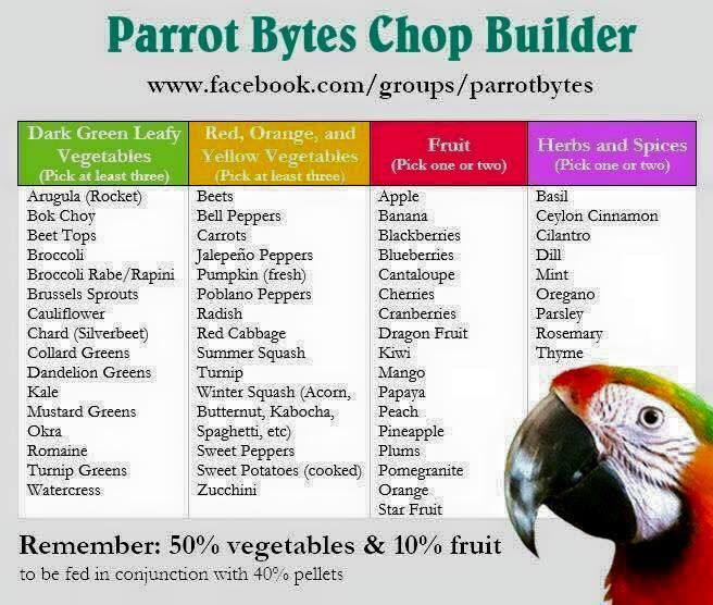 Parrot Mash and chop recipe builder. Pellets aren't necessary if you add supplements and have a large nutritious recipe.  To see why you might not want to feed pellets go to Parrot Universe > Nutrition > Dangers of Pellets