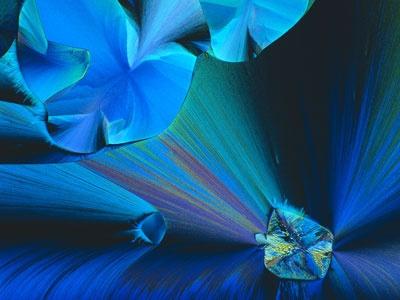 John E. Hart  Boulder, Colorado, USA  Crystallized acetaldehyde and methylene blue (25 x)    Polarized light