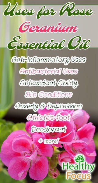 Rose Geranium Essential Oil has benefits including anti-inflammatory and antibacterial. It can also help with anxiety,candida, athletes foot and hemorrhoids