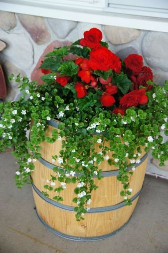 Junky Garden Planters -flower pot combination