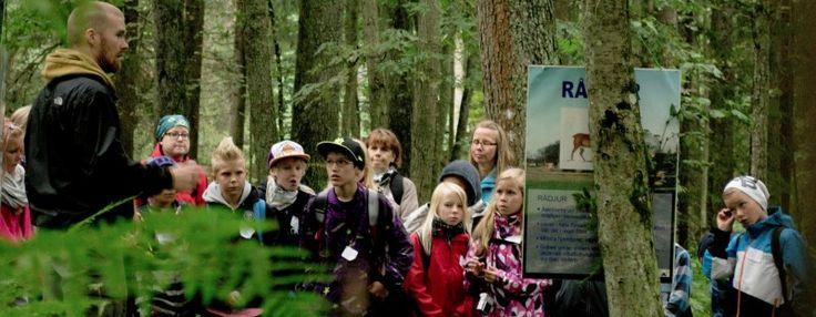 Suomen Metsäyhdistys