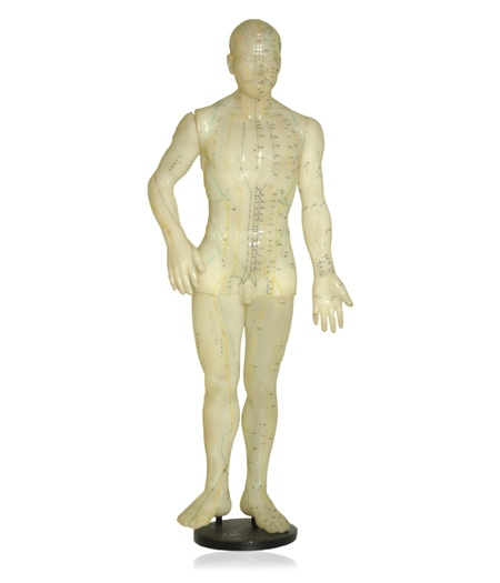 Manequim masculino em látex, usado em aulas de instrução de acupuntura.    www.desmobilia.com.br