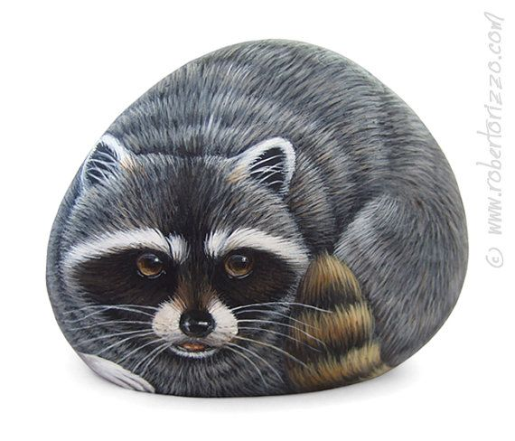I Painted this Raccoon on a Natural Sea Rock. A unique Piece of Art and a great Gift Idea!  My painted stones are unique pieces of art. I paint