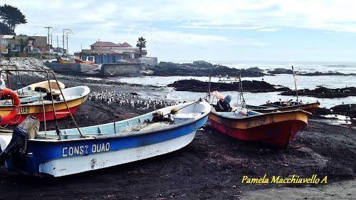 Panoramio - Photos by Pamela Macchiavello