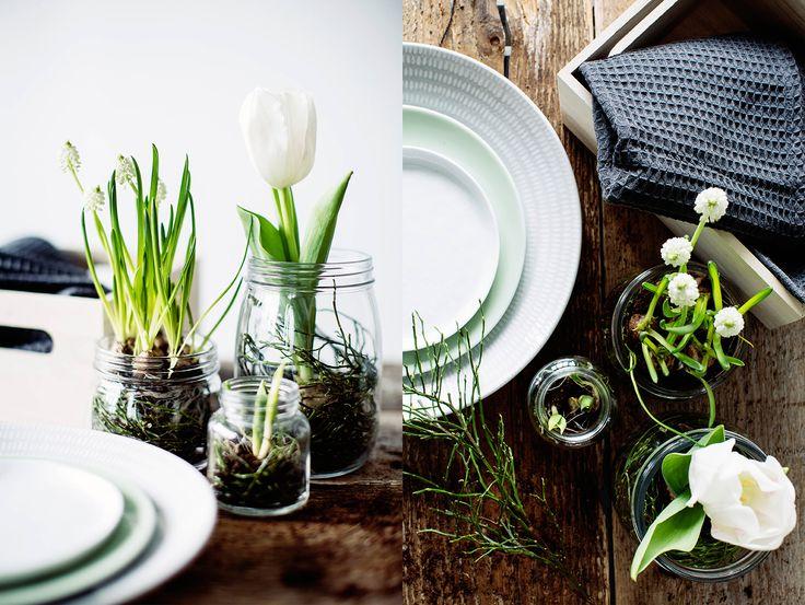 Påskens blomster – Inspiration & inredningstips – Inredning online – Lagerhaus