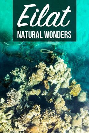 Eilat in Israel is definitely a place worth visiting. There's a lot to do also outside beaches and perfect hotels. Check out the 3 main natural parks in the area and admire the biodiversity and interesting history of Eilat, Isreael.   What to do in Eilat