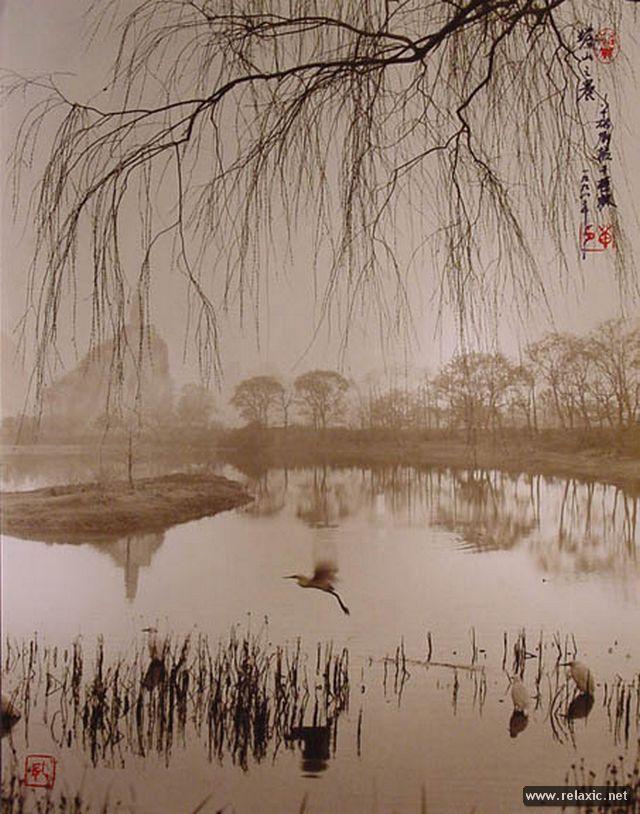 Китайский художник Дон Хонг-Оай (Dong Hong-Oai)