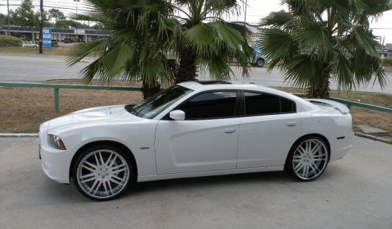 Wheels would look good on the fusion. | possible add ons ...