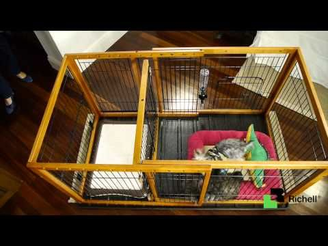 puppy playpen setup - Google Search