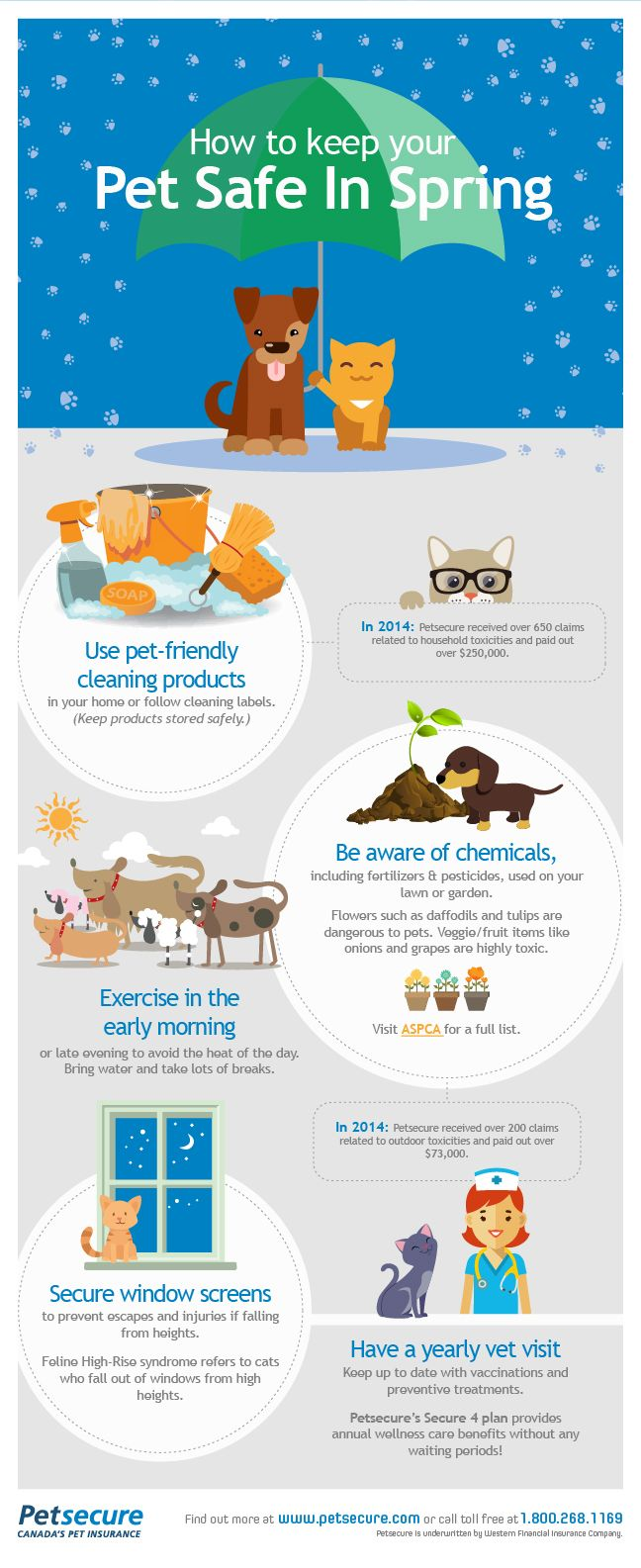 It's spring, and whether you're doing some spring cleaning, taking advantage of the warm weather and getting outdoors or even working on your garden, you want to keep your pets safe. Here are some handy spring safety tips!
