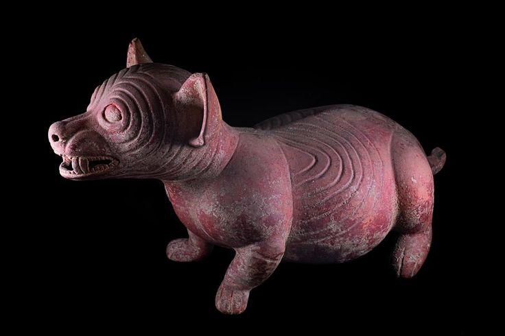 Colección Stavenhagen: Riqueza prehispánica | Museógrafo