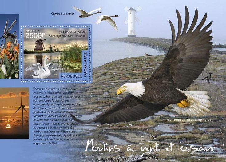 TG 14517 bWindmills and birds (Windmills in Kinderdijk, Netherlands, Cygnus olor)