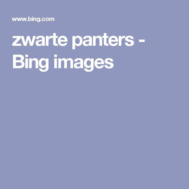 zwarte panters - Bing images