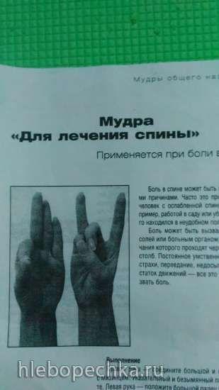 http://hlebopechka.ru/gallery/albums/userpics/125938/P_20160913_065752_BF.jpg