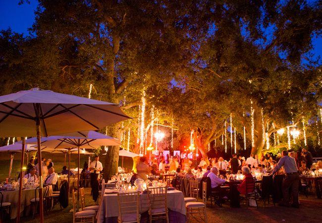 Best 25+ Outdoor Evening Weddings Ideas On Pinterest