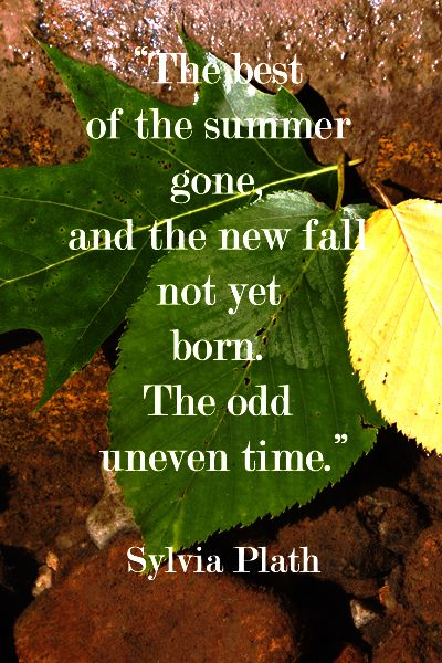 Attractive Sylvia Plath Quote Between Summer And Autumn