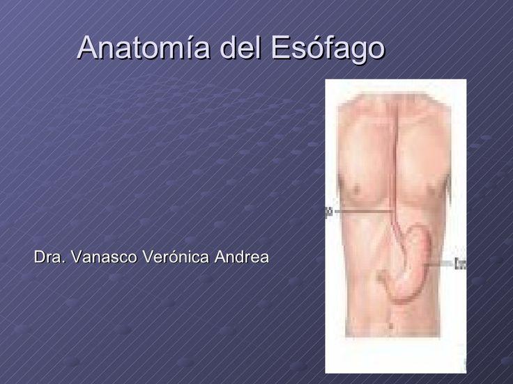 Esofago anatomia y tecnica
