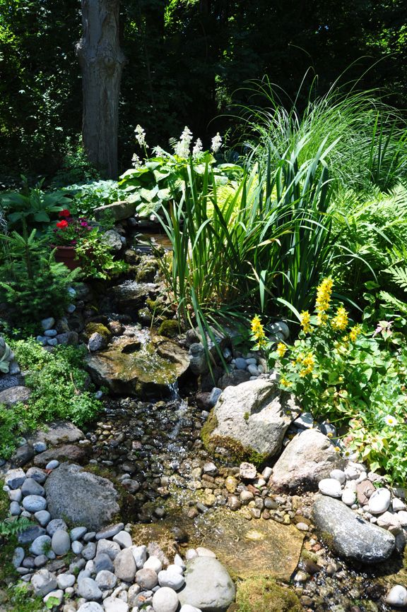 The 25 best ideas about garden stream on pinterest for Backyard streams and waterfalls