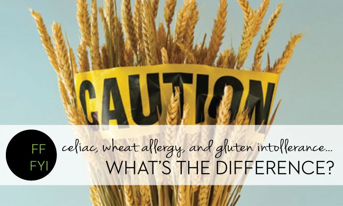 What's the difference between Celiac Disease, Gluten Intolerance, and Wheat Allergies? A Dietitian Explains
