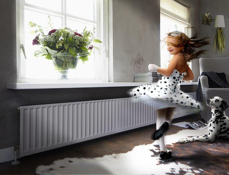 FR Dalmatier - voor
