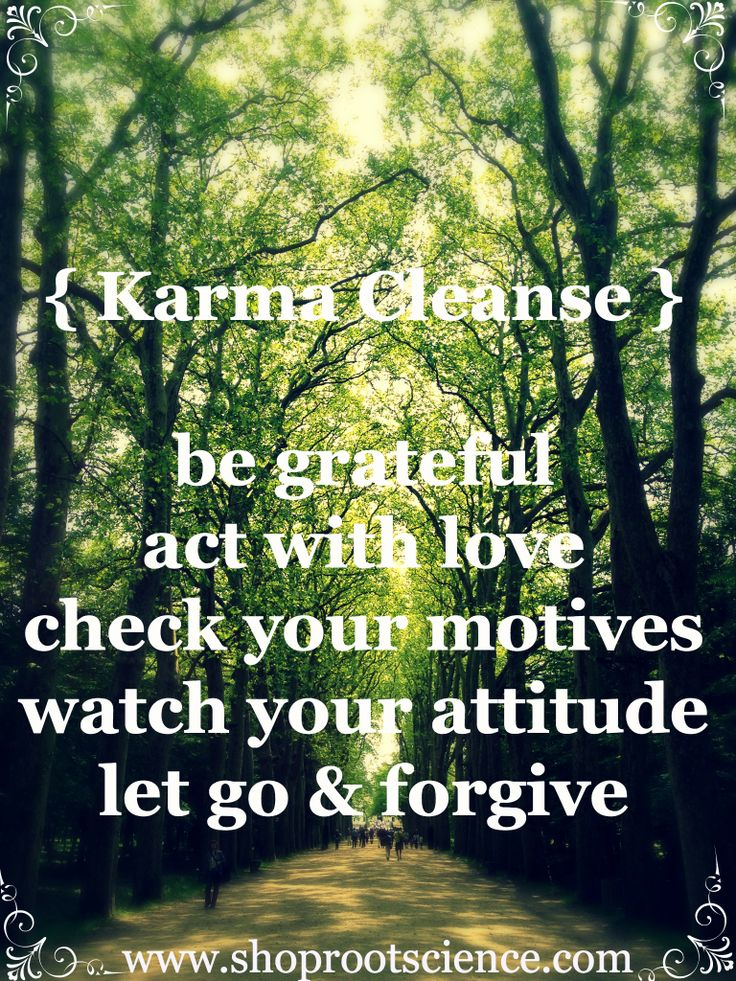 "*{Karma Cleanse} ""be grateful... act with love... check your motives... watch your attitude... let go & forgive."""