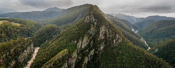 WILKOGRAPHY---Tasmanian-Photography---Leven-Canyon.png