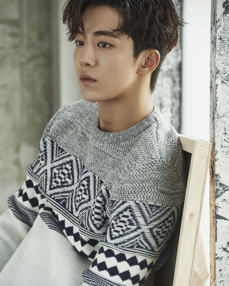 Nam Joo-Hyuk (Weightlifting Fairy Kim Bok Joo, Moon Lovers: Scarlet Heart Ryeo, Who Are You: School 2015, Surplus Princess)