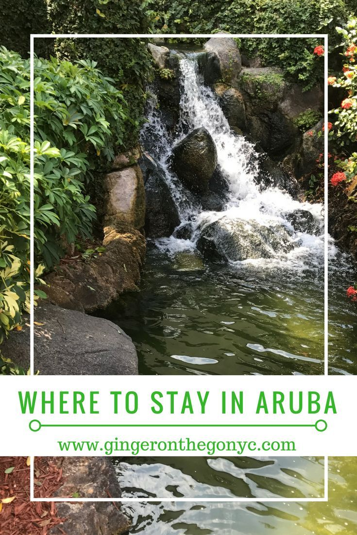 Hotels in Aruba can be quite pricey, but the AirBNB options are quite lovely and affordable. If you are visiting, consider these lovely apartments!