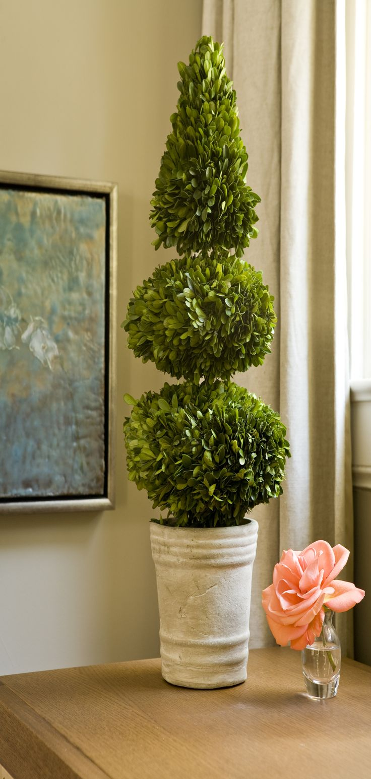 Real Boxwood Leaves.  Artfully Preserved