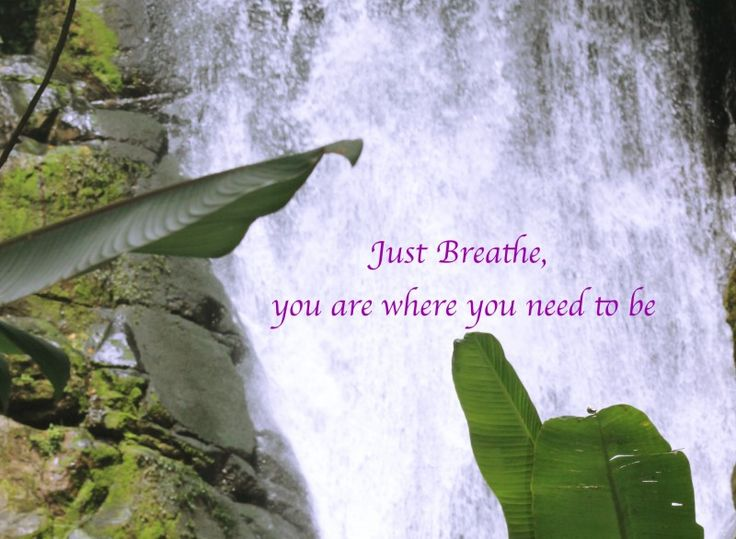 In the following posts I am going to explain to you different breathing techniques, as well as use videos that will help increase your mind body connection, alleviate stress, anxiety and pain, speed up and slow down your pulse, energize and uplift you, as well as heat up or cool down your body. Being able to learn these techniques and utilize them when needed will increase your overall well being and help equip you with strategies to combat everyday life stressors.