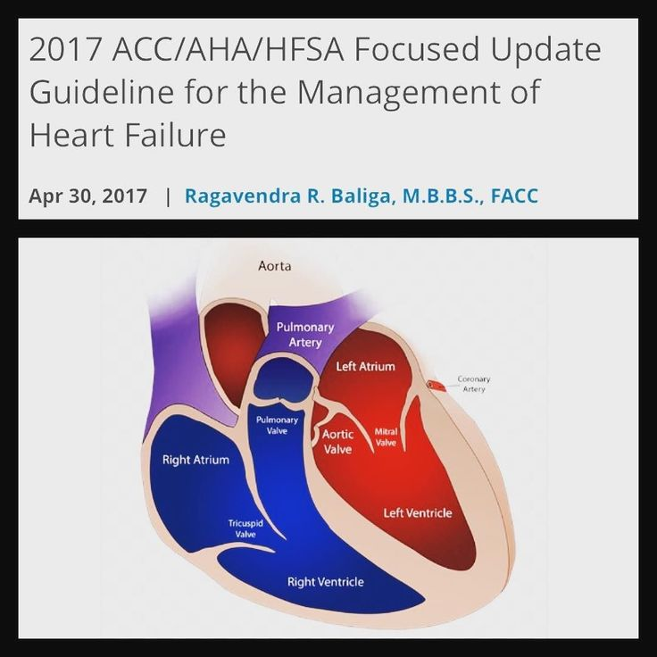 This focused update represents the second part of a 2-stage publication; with the first part having been published as the 2016 ACC/AHA/HFSA Focused Update on New Pharmacological Therapy for Heart Failure which introduced guidance on new therapies specifically for the use of an angiotensin receptorneprilysin inhibitor (ARNI) (valsartan/sacubitril) and a sinoatrial node modulator (ivabradine). That focused update was published concurrently with the European Society of Cardiologys complete…
