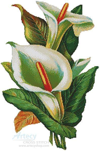 Artecy Cross Stitch. Calla Lilies 2 Cross Stitch Pattern to print online.