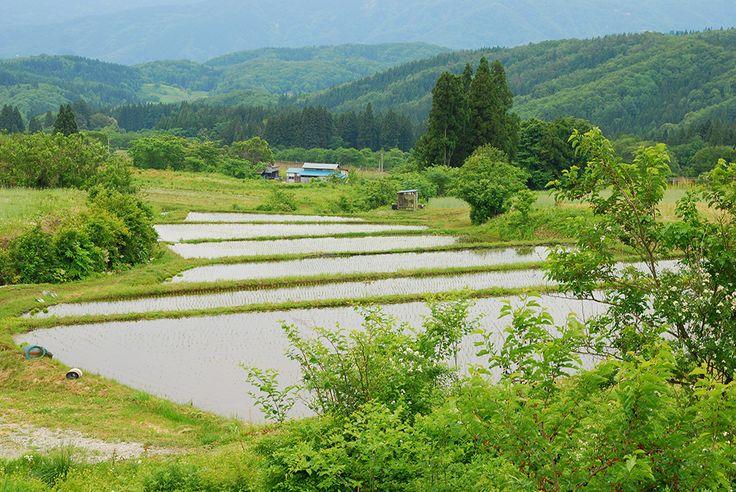 美田舎 − Be INAKA! − Japanese beautiful rural landscape and nature.: Rural Village - YAMAGATA pref. -