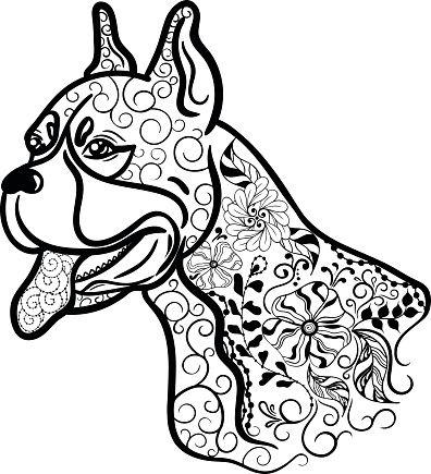 Boxer Dog Head Doodle Vector Id547045916 396x435