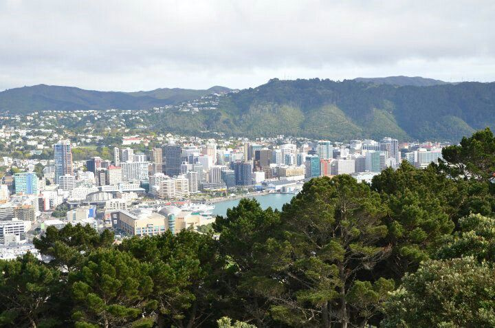 #wellington, capital city #NewZealand from #MountVictoria. If you like our photos, like us on FB www.facebook.com/trendstravel #mount #victoria #NewZealand