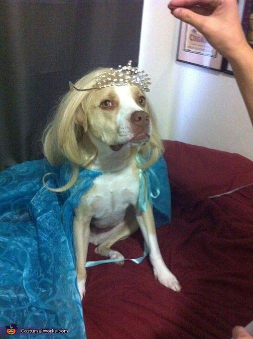 Elsa Costumes For Halloween