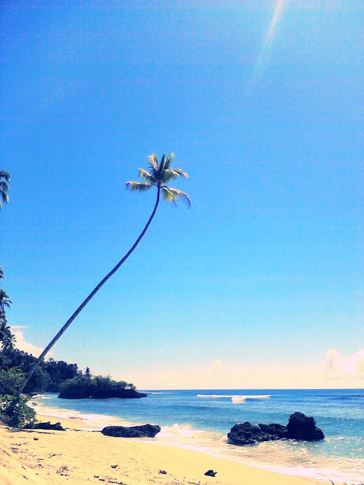 Tawakali, North Morotai, Morotai Island, North Maluku, Indonesia