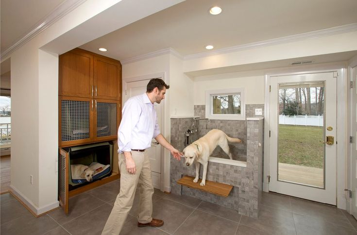 dc metro dog wash station with novelty print area rugs laundry room transitional and beds friendly